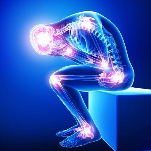 Pain, Organ Rejuvenation, Fear of Moving Forward Webinar