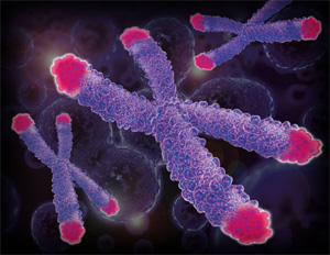 Activating Telomeres and Stem Cells