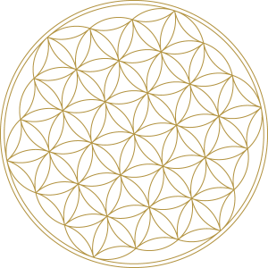 Flower Of Life Activation - Sacred Activations - Sacred Geometry / Akashic Records Reading // Spiritual Awakening Signs / Fifth Dimensional Grid System // #sacredactivations #tamraoviatt